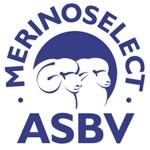 MerinoSelectASBV300dpi2